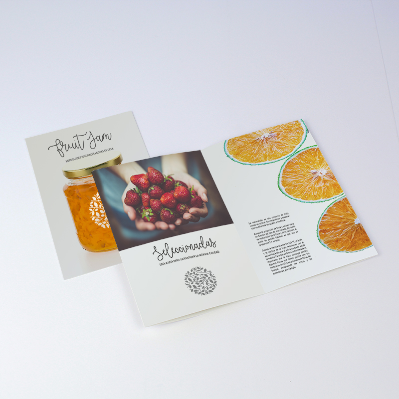 Brintel diptico quesodiseño - diseño gráfico - artes gráficas - imprenta - etiquetas - bolsas - packaging - display - imagen - plv
